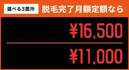 選べる3箇所 脱毛完了月額定額なら 3箇所15ヶ月間 月額定額¥16,500 3箇所24ヶ月間 月額定額¥11,000