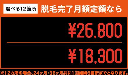 選べる12箇所 脱毛完了月額定額なら 12箇所24ヶ月間 月額定額¥26,800 12箇所36ヶ月間 月額定額¥18,300 ※12カ所の場合、24ヶ月・36ヶ月共に1回施術6箇所までとなります。