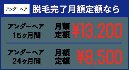 アンダーヘア 脱毛完了月額定額なら アンダーヘア15ヶ月間 月額定額¥13,200 アンダーヘア24ヶ月間 月額定額¥8,500