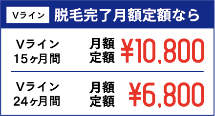Vライン 脱毛完了月額定額なら Vライン15ヶ月間 月額定額¥10,800 Vライン24ヶ月間 月額定額¥6,800